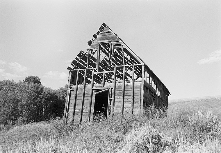 Lamont Idaho, 2010